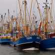 Dutch fishing fleet lauwersoog — Stock Photo #14685767