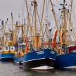 Dutch fishing fleet lauwersoog — Stock Photo