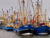 Dutch fishing fleet lauwersoog — Stock Photo