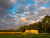 Hay stack during sunset — Stock Photo