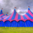 Big top circus tent on a field — Stock Photo #14704081