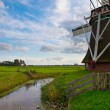 Typical dutch agricultural landscape — Stock Photo