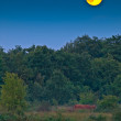 Proportional full moon above forest edge - Stock Photo