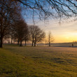 Winter in dutch recreational area — Stock Photo