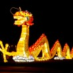 Dragon Lantern — Stock Photo