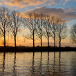 Stock Photo: Trees along wide waterway