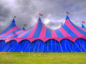 Big top circus tent on a field — Stock Photo