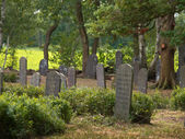 Jewish cemetery in rural setting — Stock Photo
