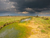 Brooding summer storm above upland moor — Stock Photo