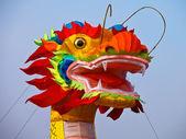 Colorfull dragon — Stock Photo