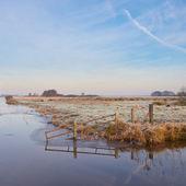 Scenic rural landscape — ストック写真