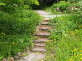 Stairway in an ecological garden — Stockfoto