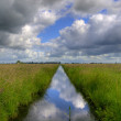 Reflecting polder ditch — Stock Photo
