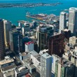 Aerial view Auckland — Stock Photo