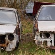 Rusted carwrecks - Stock Photo
