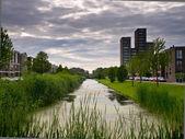 Nederländska bostadsområde — Stockfoto