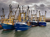 Modern fishing fleet — Stock Photo