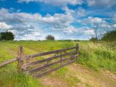 Ogrodzone drogi w krajobraz lato — Zdjęcie stockowe