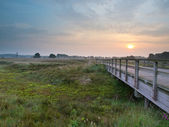 Wooden bridge during sunrise — Stock Photo