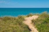 Plaża, wydmy, z widokiem na morze — Zdjęcie stockowe