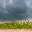 Stock Photo: Dark Sky in Spring