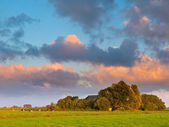 Zonsondergang over boerderij werf — Stockfoto