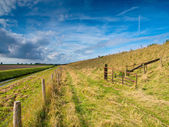 Farm Trail along a Dutch Dike — Stock Photo