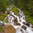 Fresh River Stream  — Stock Photo