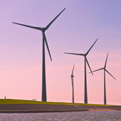 Wind Turbines along the Sea Dike — Stock Photo