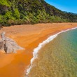 Secluded Beach New Zealand — Stock Photo #39379337