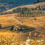 Tuscan Farm Countryside Scenery — Stock Photo