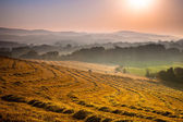 Tuscan Countryside at Dawn with Haze — Stock Photo