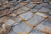 Detail of a Slate Tile Roof — Stock Photo