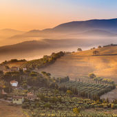 Morning Fog over Tuscany Landscape, Italy — Stock Photo