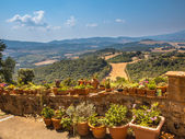 View over Tuscany Hilly Landscape with Pots of Flowers along the — Stock Photo