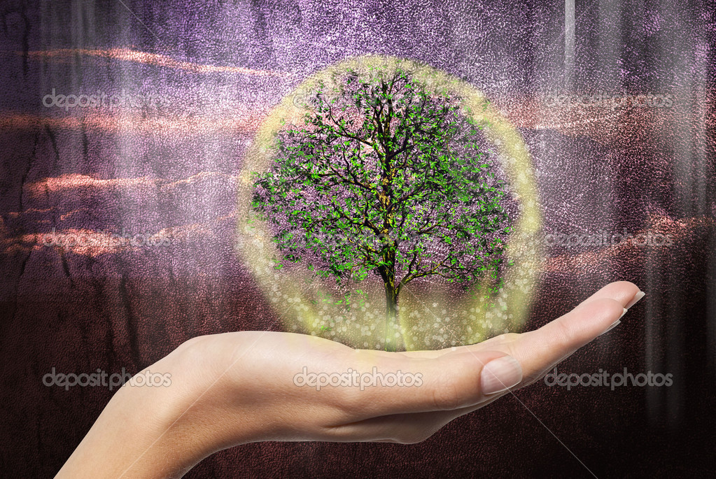 Abstract magic tree on hand  Stock Photo #14817155