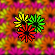 Abstract flowers - Stock Photo
