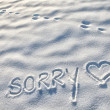 Sorry word on the snow — Stock Photo