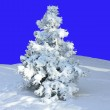 Christmas tree in the snow. — Stock Photo