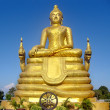 Golden statue of the Great Buddha. — Stock Photo