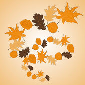 Whirl of autumn leaves — Stock Vector