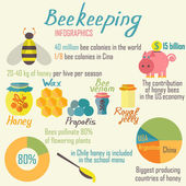 Infographics beekeeping. Vector illustration. — 图库矢量图片