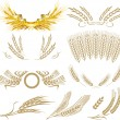 Wheat ears collection — Vector de stock