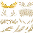 Wheat ears collection — 图库矢量图片