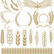 Wheat ears collection — Stock Vector #22417521