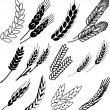 Wheat ears collection — Stock Vector #22417609