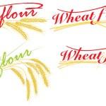 Wheat flour — Stock Vector #22417699