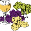 Grapes composition - Stock Vector