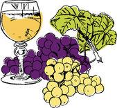 Grapes composition — Stock Vector