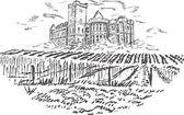 Wineyards - hand draw — Stock Vector